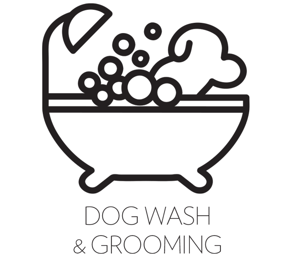 Dog Wash Blow Dry Tidy